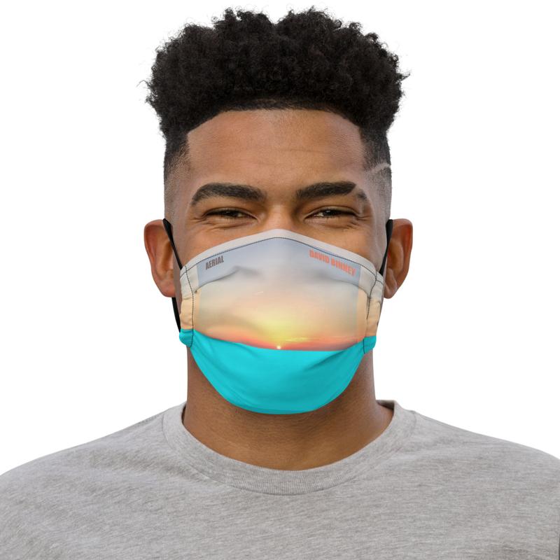 Aerial Premium face mask