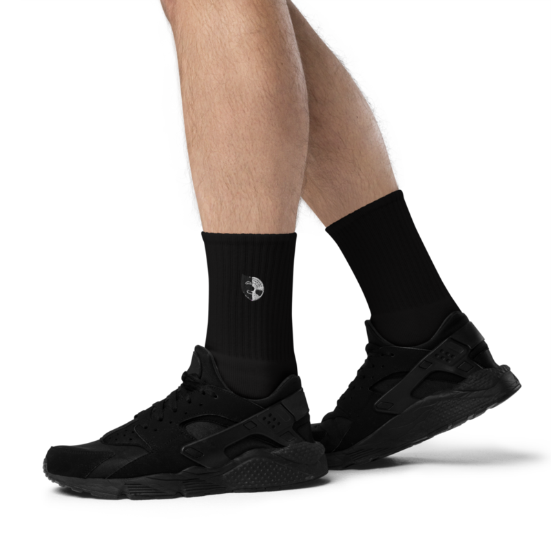 Two Worlds Socks
