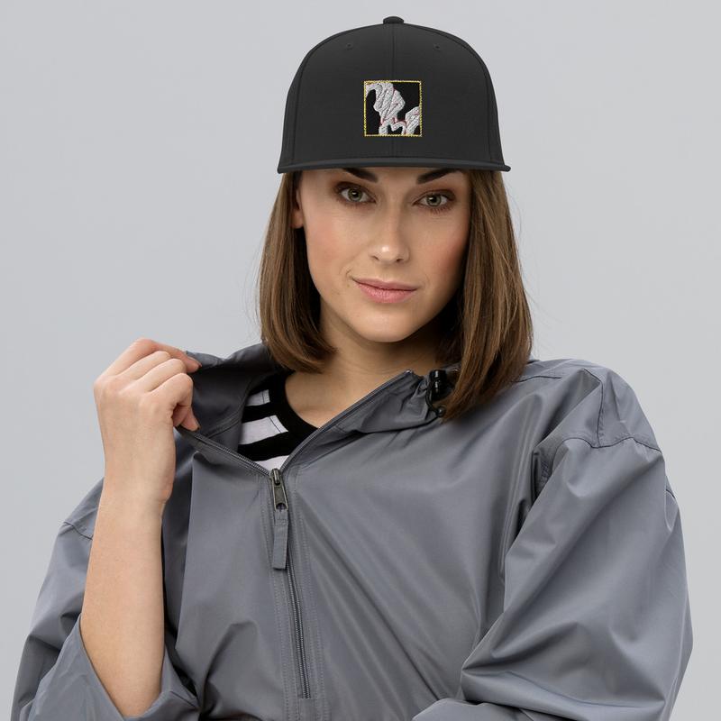 Snapback Hat - Signature