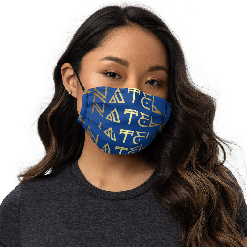 NATEL Premium face mask (Royal Blue Multi)