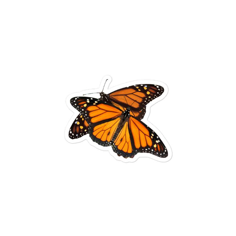 Monarch-Butterflies_X2 - Bubble-free stickers