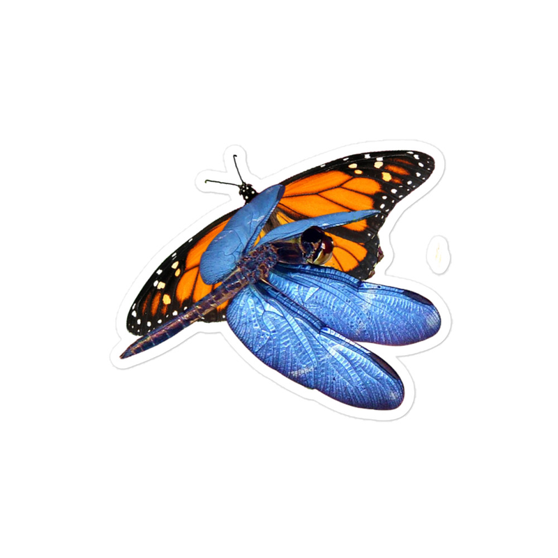 Blue-DragonFly and Monarch ButterFly - Bubble-free stickers