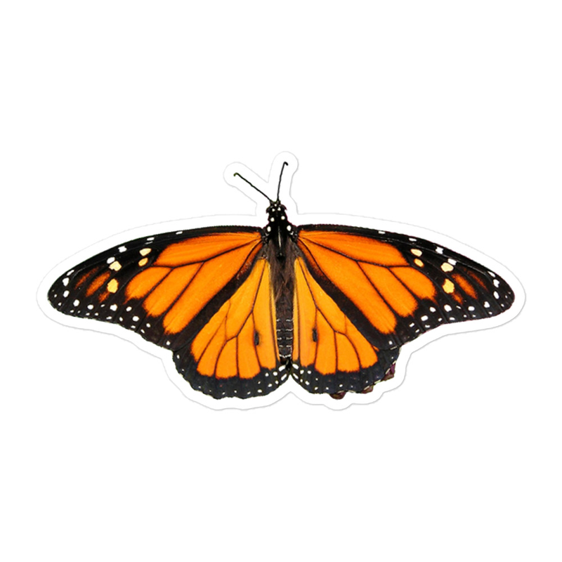 Monarch-Butterfly - Bubble-free stickers