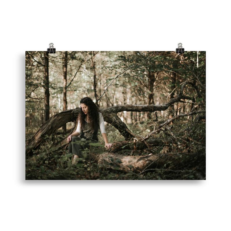 """Evergreen"" Poster"